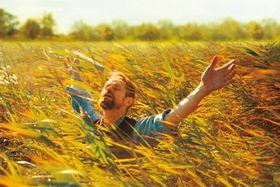 """アートの秋!映画から展覧会まで…深淵なる""""ゴッホ""""の世界に浸ってみる?<写真35点>"""