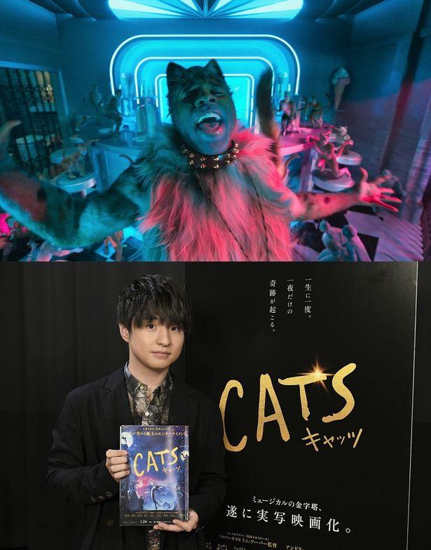 Official髭男dismの藤原聡が、すべての猫を虜にするラム・タム・タガー役に決定!