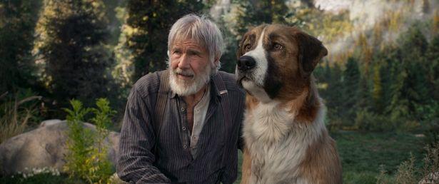 傑作冒険小説をハリソン・フォード主演で映画化した『野性の呼び声』