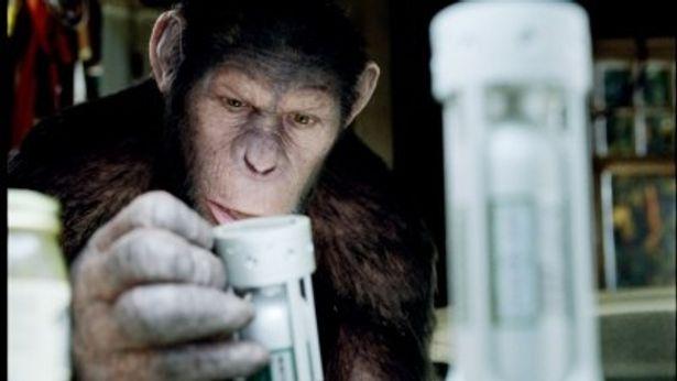 猿が試験管を手にしている。知能の発達を感じさせる一枚だ
