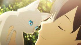アクロバティックにネコに変身!『泣きたい私は猫をかぶる』のファンタスティックな世界観に釘付け