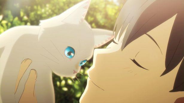 【写真を見る】女子校生が猫に変身!大好きな彼にモフモフされたい…