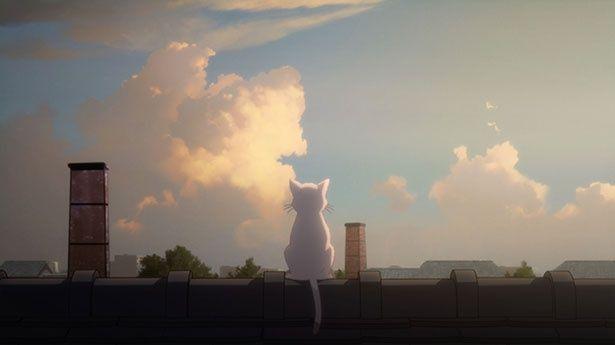 【写真を見る】白猫「太郎」は、不思議なお面の力でムゲが変身した姿だった…