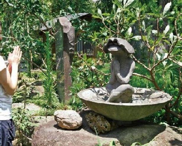カッパを探したいなら常泉寺(神奈川県大和市)は必須スポット! 様々なカッパの像が出迎えてくれる