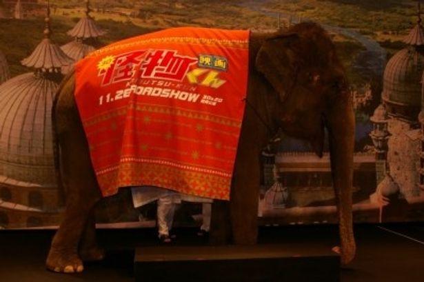 大野が乗って登場した象のランディ。松岡は「久しぶりだな!」と声をかけ、ランディをなでた