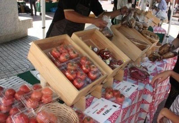 東京・恵比寿で行われたくまもとマルシェにて。熊本県はトマトの生産量が日本一だ