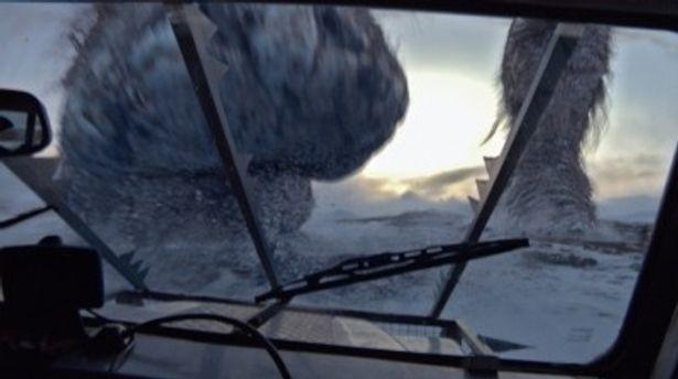 トロールは本当にいたのか!? これが車から撮影したトロールの足
