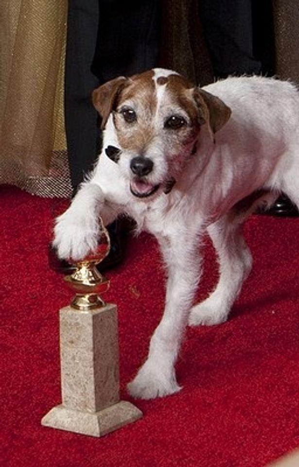 『アーティスト』のアギーがアカデミー賞を最後に引退