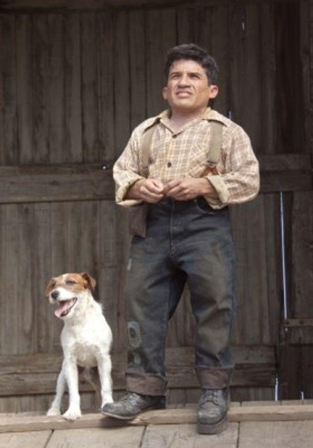 『恋人たちのパレード』では曲芸師の飼い犬クィーニーとして出演しているアギー