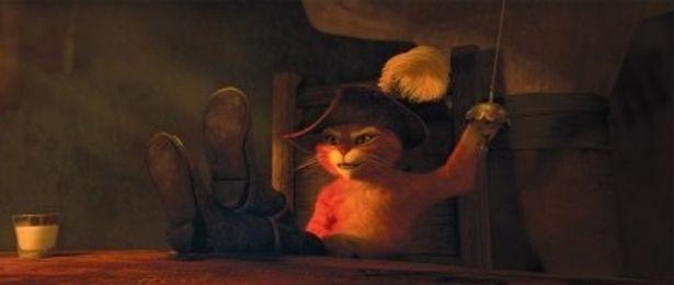 人間からネコ扱いを受け、冷やかされたプスは「ネコは怒らせない方が身のためだ!」と忠告