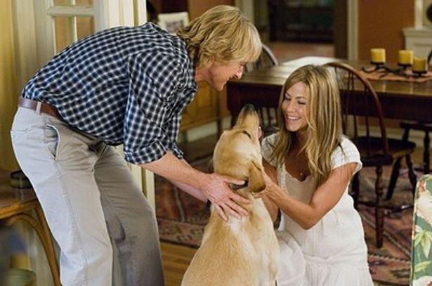 『マーリー 世界一おバカな犬が教えてくれたこと』を見てファンになったようだ