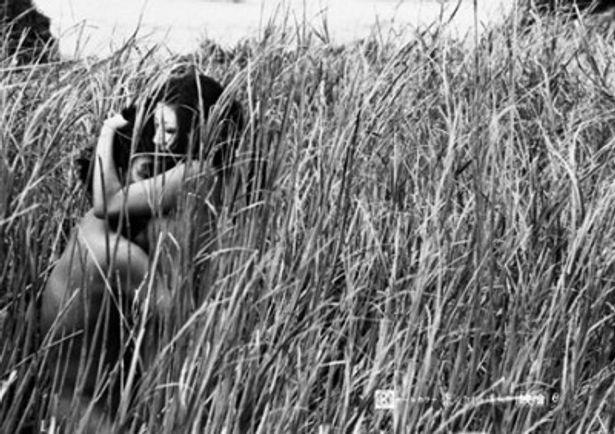 【写真を見る】砂丘で全裸の男女が馬跳びをするシーンが印象的な神代辰巳監督の名作『恋人たちは濡れた』(73)