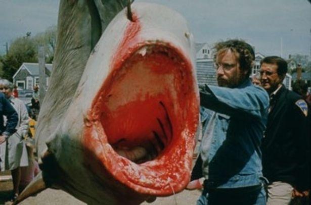 後ろを見たら巨大な人食いサメが!なんてことはないのでご安心を