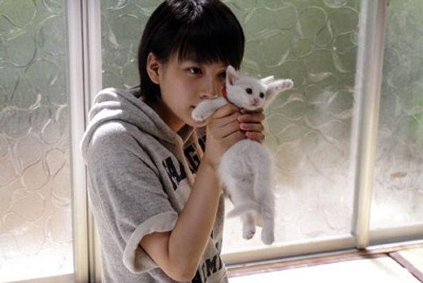 【写真を見る】能年玲奈×猫という、無限大の魅力が詰まったこのカットにめろめろ!?