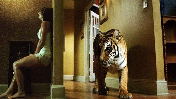 家の中に虎が!低予算を逆手に使った本物のスリルが味わえる