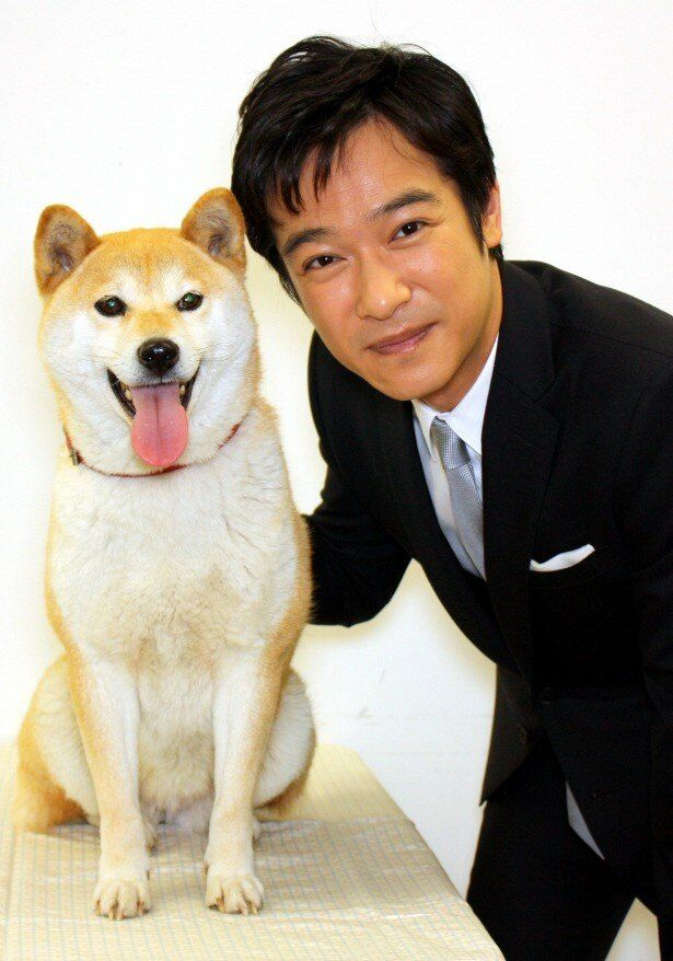 『ひまわりと子犬の7日間』の主演を務めた堺雅人