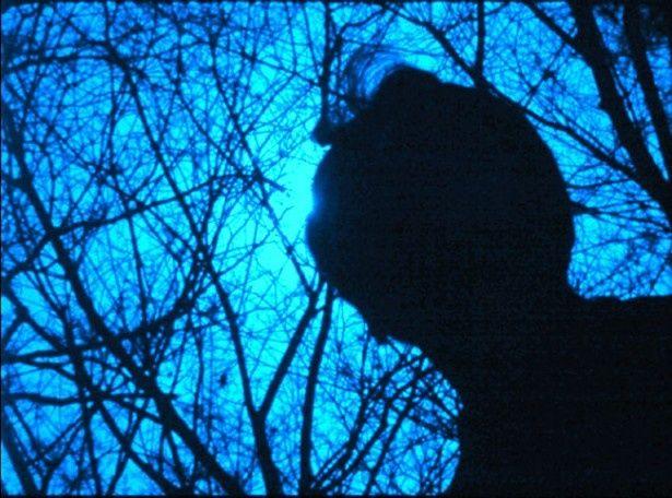 監督の葉山陽一郎は鎌倉の持つ幽玄的な魅力を描きたかったという(『鎌倉物語・黒い桜』)