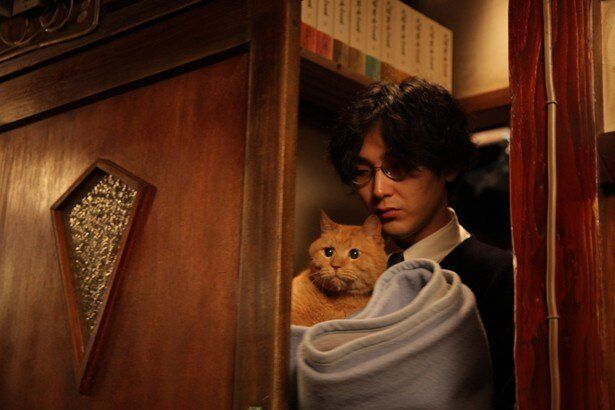 """もはや貫録すら感じられる?劇中に登場するネコ""""トラさん"""""""