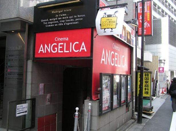 京王井の頭線渋谷駅の裏手に、ひっそりと咲くアンジェリカ
