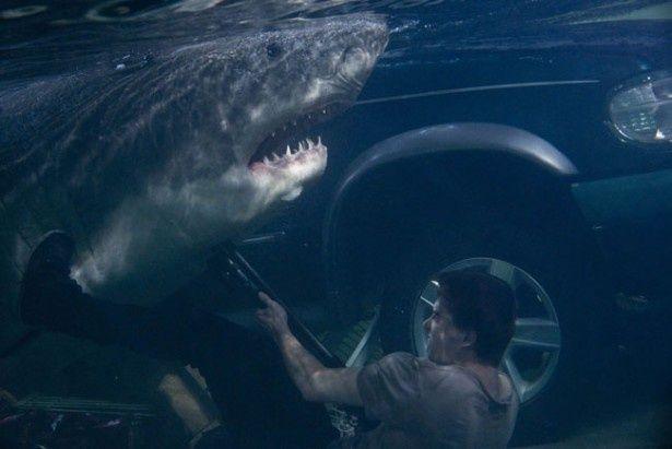 スーパーマーケットで繰り広げられる人喰いサメとのバトルが真新しい