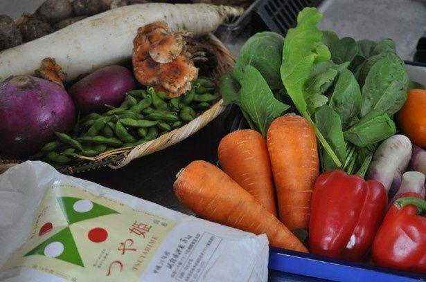 にんじん、パプリカなど新鮮な野菜がおいしそう!(『乙女のレシピ』)