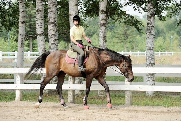 馬術部に所属する御影アキを演じる広瀬アリスが、馬乗りに挑戦。特別映像でも確認できるのでチェック!