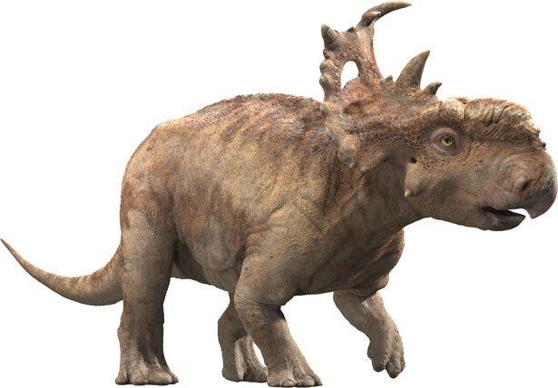 本作の主人公パッチ。角竜のパキリノサウルス