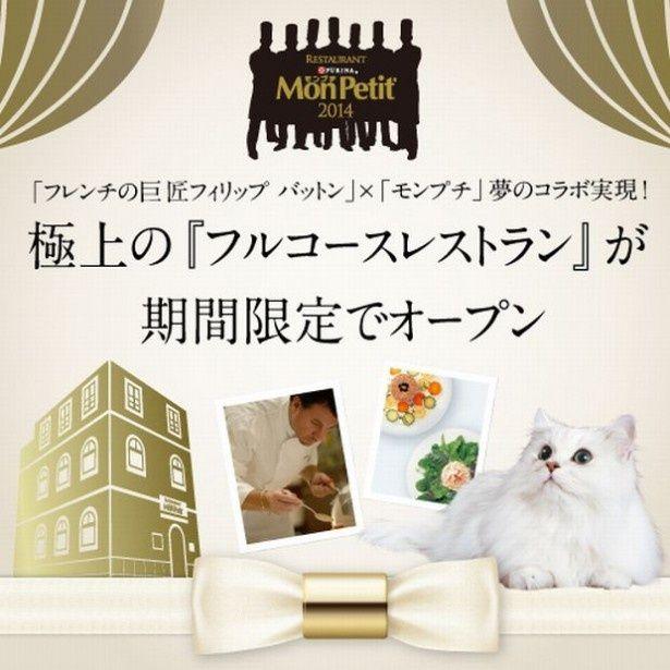 フレンチの巨匠とモンプチがコラボした猫好きのためのフルコースレストランが登場