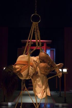 4月8日はシバリの日!『花と蛇』シリーズ最新作から緊縛画像が解禁