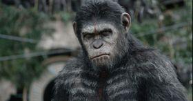 映画館に隠れた猿がクーポンを配ってる!?iBeaconを使った新たなキャンペーンに驚き!