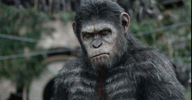 猿のシーザーを無事に見つけることができるか?