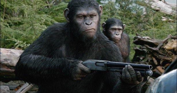 違和感なく銃を使いこなす猿たちが異様にカッコいい!