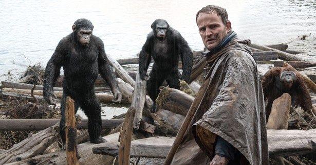 猿たちがエモーショナルな演技を披露している