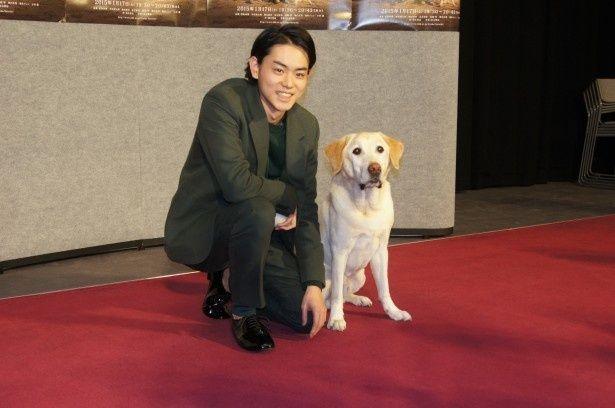 ドラマ「二十歳と一匹」の会見に出席した菅田将暉とゴールデンレトリバーのハロー