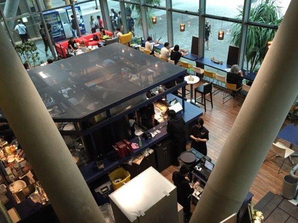 7月1日(水)AM11時に「CinemaCafe PIZZERIA BAR NAPOLI」がオープン!