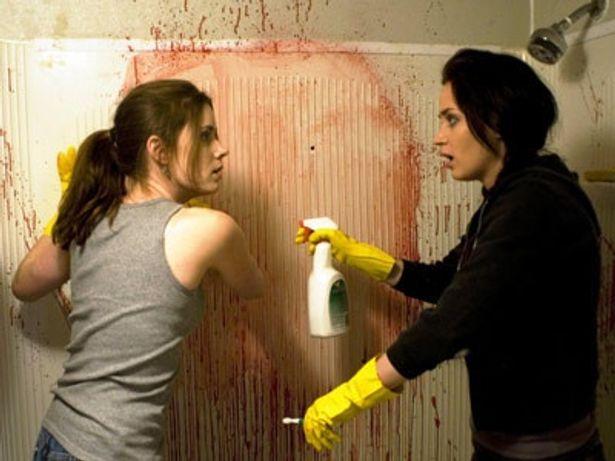 ローズとノラの崖っぷち姉妹が、人生の再起を賭けて清掃業に挑戦