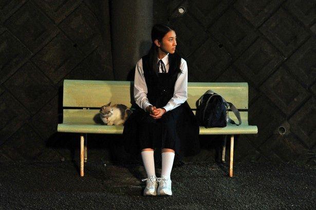 野良猫と触れ合う少女を演じた久保田