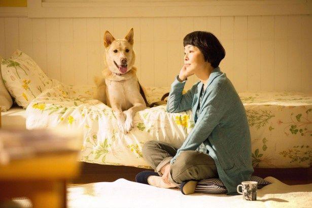名前のない犬たちと、彼らを救い出す人々を描いた、 感動のドキュメンタリードラマ映画「犬に名前をつける日」