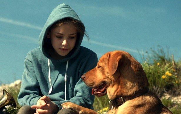 現在公開中の『ホワイト・ゴッド 少女と犬の狂詩曲』から癒し写真を一挙公開!
