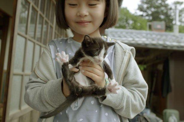 小学生のトシ(佐々木春樺)も軽々と抱っこできるコトム。肉球もステキ