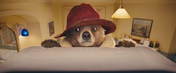 【写真を見る】赤い帽子と青いダッフルコートがお似合い!