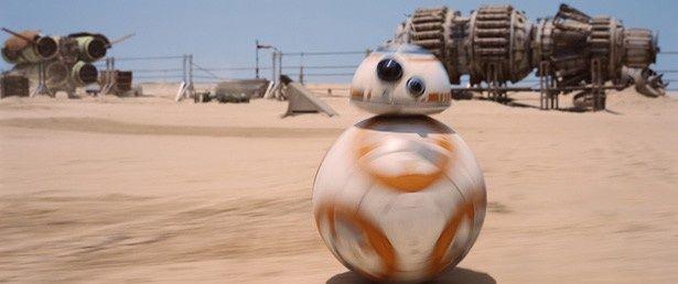 【写真を見る】砂漠を一生懸命に走る姿がカワイイ!
