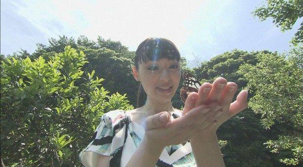神秘の蝶「アサギマダラ」との出会いに感動する栗山千明