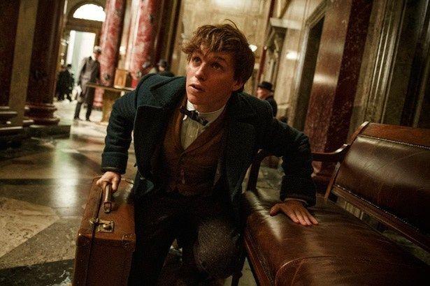 『ファンタスティック・ビーストと魔法使いの旅』の主人公はおっちょこちょいな魔法使いのニュート・スキャマンダー
