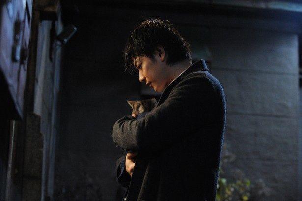 【写真を見る】愛猫のキャベツを抱きかかえる佐藤健
