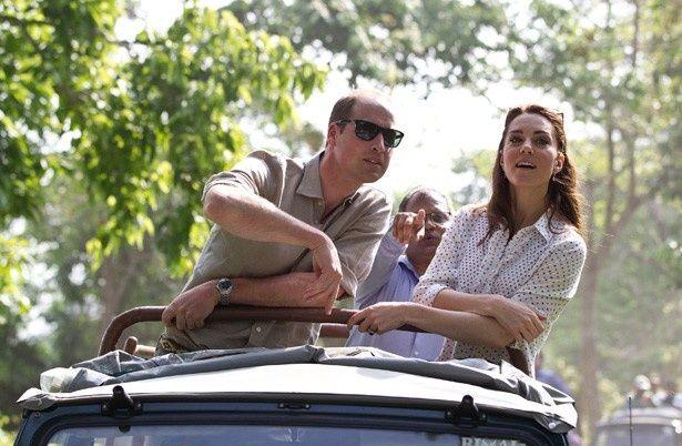 インドのカジランガ国立公園を訪問