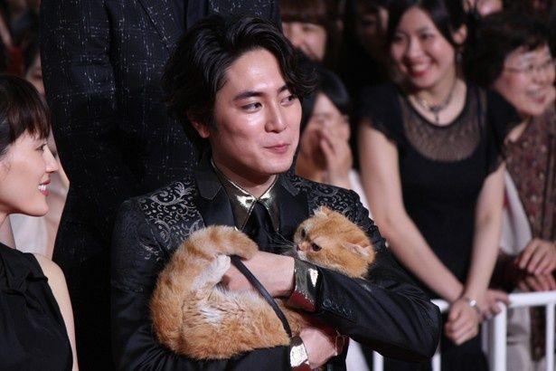 高台家の愛猫マサヨシも登場!かわいい!