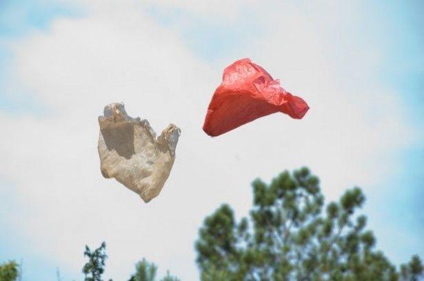 「地球を救え!プログラム」の『レジ袋の旅』