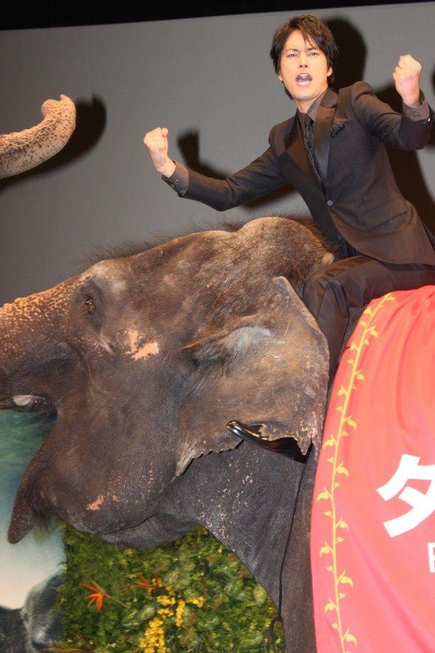 桐谷健太がゾウに乗って雄叫びを上げる