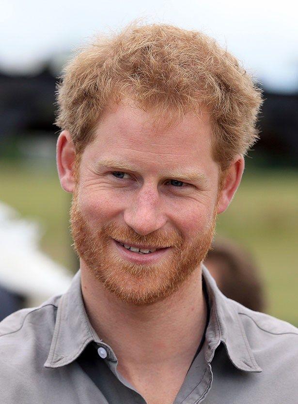 ヘンリー王子がセクシーな王族男性1位に!